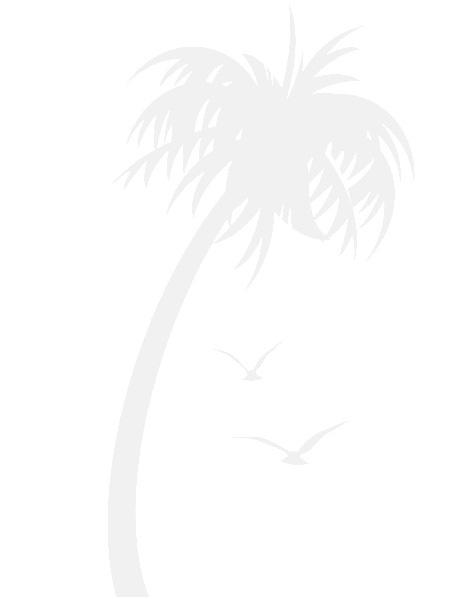 Strandurlaub in Tarifa, Zahara und Umgebung - Apartments, Ferienhäuser und Villen